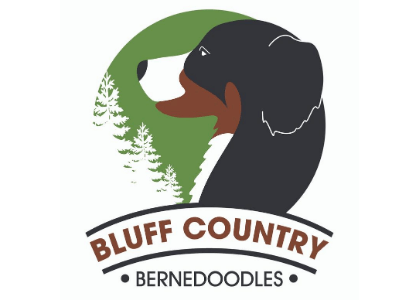 Bluff Country Bernedoodles